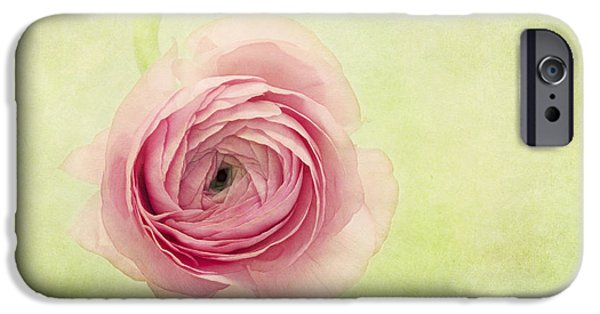 Green Rose iPhone Cases - Pistache And Pink iPhone Case by Priska Wettstein