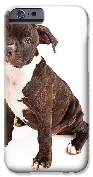 Pit Bull Puppy Black and White iPhone Case by Susan  Schmitz