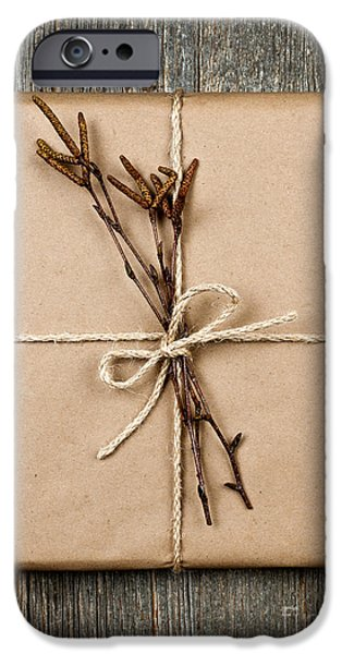 Inexpensive iPhone Cases - Plain gift with natural decorations iPhone Case by Elena Elisseeva