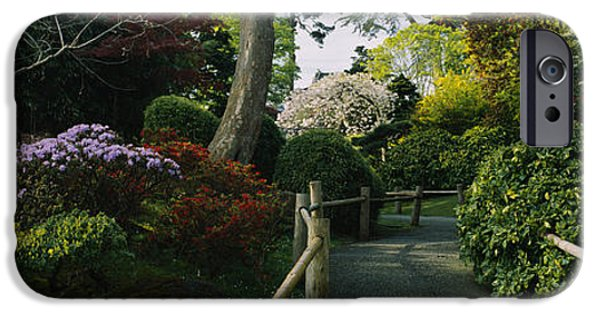 Pathway iPhone Cases - Plants In A Garden, Japanese Tea iPhone Case by Panoramic Images