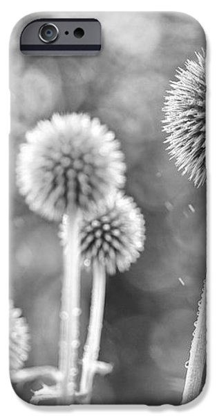 Plants in the Rain iPhone Case by Natalie Kinnear
