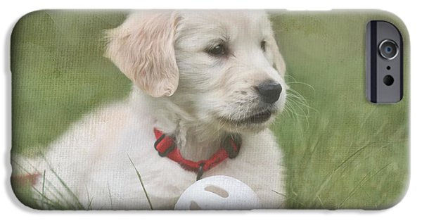 Puppies Digital Art iPhone Cases - Play Ball iPhone Case by Jayne Carney