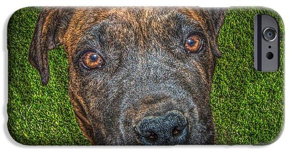 Dog Close-up Digital Art iPhone Cases - Play? iPhone Case by John Georgiou