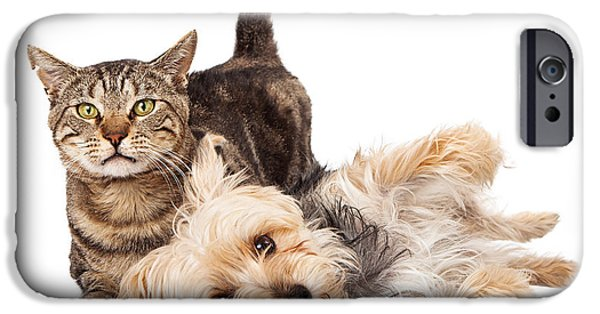 Friendly iPhone Cases - Playful Dog and Cat Laying Together iPhone Case by Susan  Schmitz