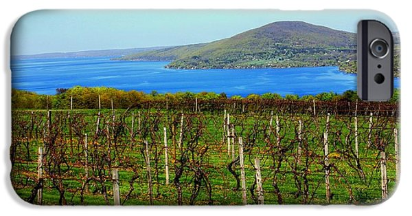 Canandaigua Lake iPhone Cases - Playing at Work iPhone Case by Glenn Curtis