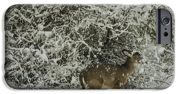 Snow iPhone Cases - Playing in the snow iPhone Case by Bruce Pritchett