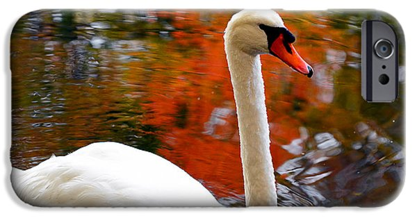 Swan iPhone Cases - Pleasant Welcome iPhone Case by Lourry Legarde