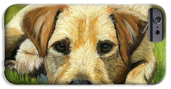 Animal Cards Pastels iPhone Cases - Please Throw my Ball iPhone Case by Sarah Dowson