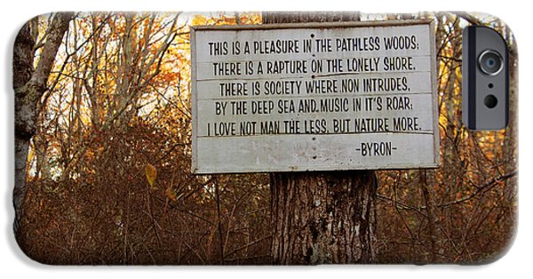 Pleasure iPhone Cases - Pleasure in The Pathless Woods iPhone Case by Andrew Pacheco