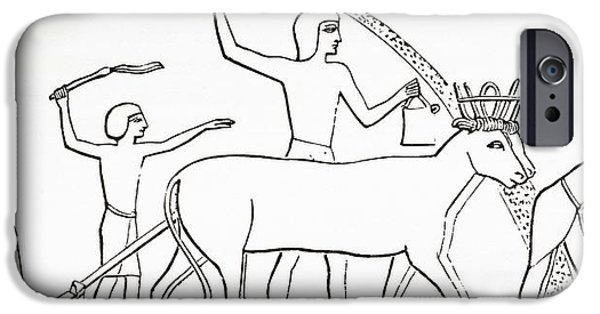 Agriculture iPhone Cases - Ploughing, Hoeing And Sowing With Animals In Ancient Egypt.  From The Imperial Bible Dictionary iPhone Case by Bridgeman Images