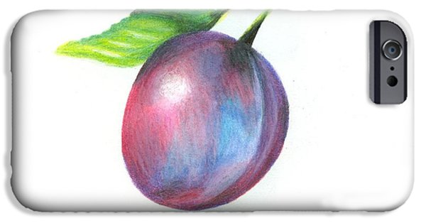 Plum Drawings iPhone Cases - Plum iPhone Case by Ashley Hall