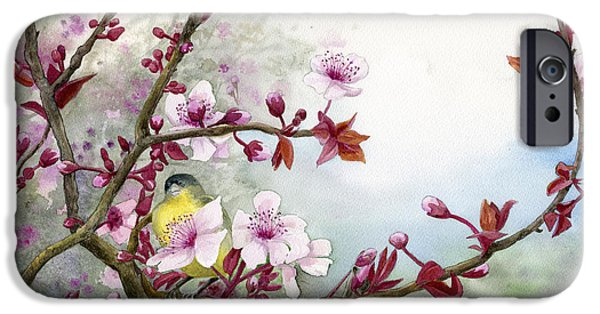 Plum iPhone Cases - Plum Blossoms iPhone Case by Karen Wright