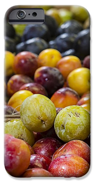 Farm Stand Photographs iPhone Cases - Plum Gorgeous iPhone Case by Caitlyn  Grasso