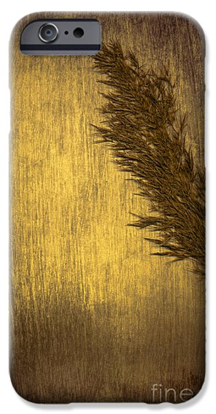 Scanography iPhone Cases - Plume iPhone Case by Jan Bickerton