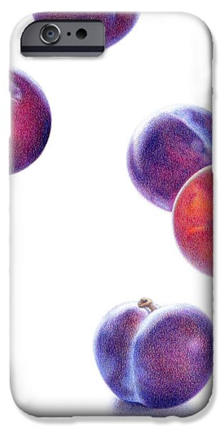 Plum Drawings iPhone Cases - Plums Up iPhone Case by Paula Pertile
