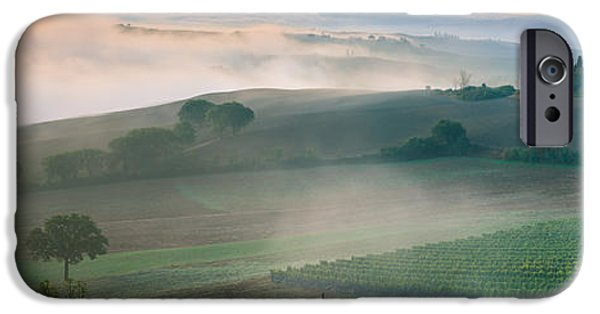 Vineyard Prints iPhone Cases - Podere Belvedere - Tuscany - Italy iPhone Case by Henk Meijer Photography