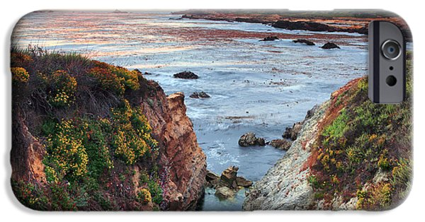 Point Lobos State iPhone Cases - Point Lobos State Reserve 3 iPhone Case by Emmanuel Panagiotakis