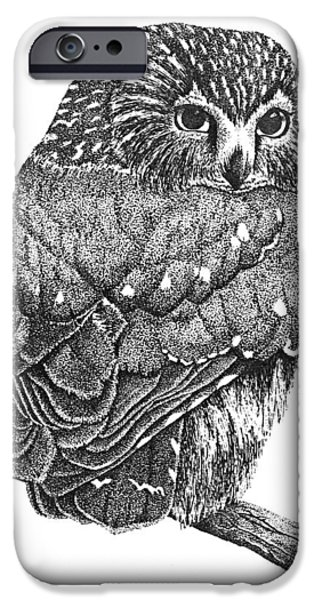Pointillism Sawhet Owl iPhone Case by Renee Forth-Fukumoto