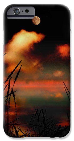 Pointing at the Moon iPhone Case by Mal Bray
