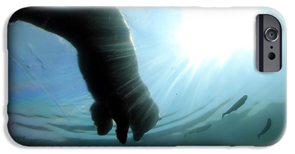 Sun Rays Pastels iPhone Cases - Polar Plunge iPhone Case by Jackie Novak