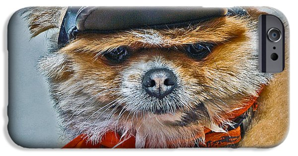Lazy Red Dog iPhone Cases - Pomeranian Biker Dog iPhone Case by Gary Keesler