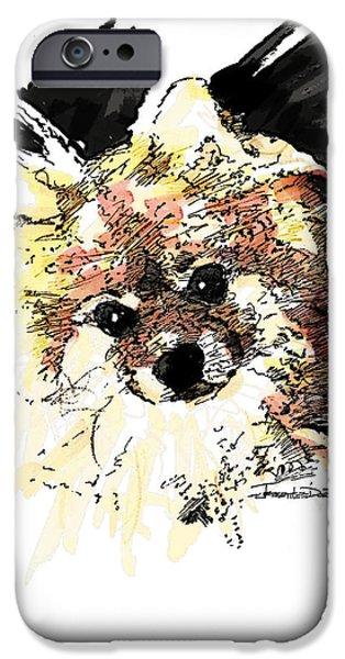Pen And Ink Photographs iPhone Cases - Pomeranian iPhone Case by Jerrett Dornbusch