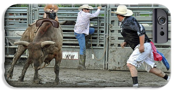 Lazy Red Dog iPhone Cases - Pomeranian VS Bull Riding iPhone Case by Gary Keesler