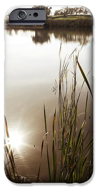 Wetland iPhone Cases - Pond iPhone Case by Les Cunliffe