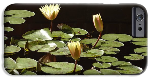 Watson Lake iPhone Cases - Pond Lilies iPhone Case by Jill Watson