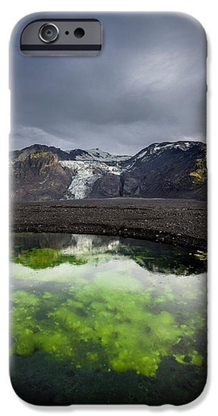Alga Photographs iPhone Cases - Pond With Algae And Ash,from iPhone Case by Panoramic Images