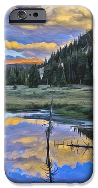 Pondering Reflections iPhone Case by David Kehrli
