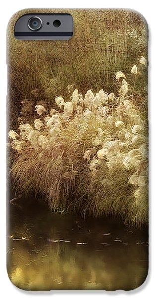 Pond's Edge iPhone Case by Julie Palencia