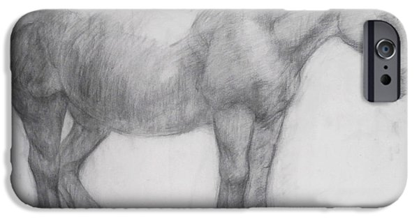Animal Drawings iPhone Cases - Pony iPhone Case by Cynthia Harvey
