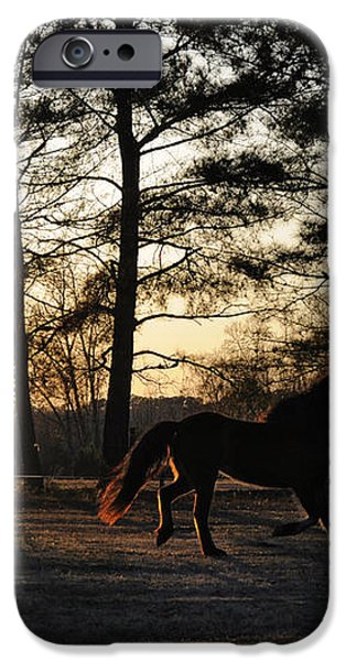 Pony's Evening Pasture Trot iPhone Case by Paulette B Wright