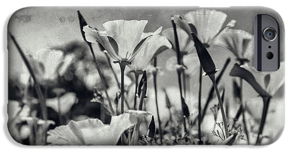 A Sunny Morning iPhone Cases - Poppies in Mono iPhone Case by Nomad Art And  Design