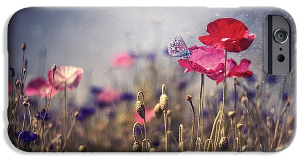 Poppies iPhone Cases - Poppies iPhone Case by Magda  Bognar