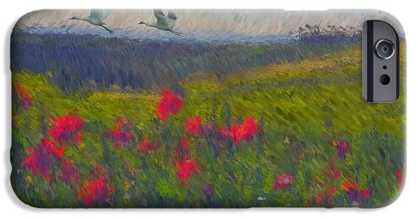 Tuscan Hills iPhone Cases - Poppies of Tuscany iPhone Case by Lianne Schneider
