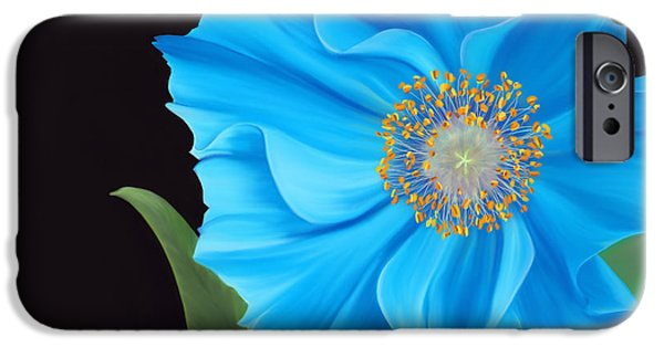Petals Pastels iPhone Cases - Poppy 2 iPhone Case by Laura Bell
