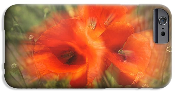 A Sunny Morning iPhone Cases - Poppy Craze iPhone Case by Nomad Art And  Design