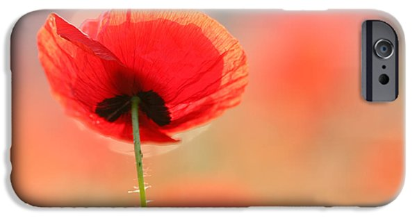 Bokeh iPhone Cases - Poppy Dream iPhone Case by Roeselien Raimond