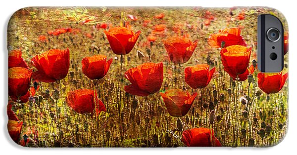 A Sunny Morning iPhone Cases - Poppy Field iPhone Case by Nomad Art And  Design