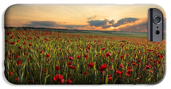 Crops iPhone Cases - Poppy Field iPhone Case by Ian Hufton