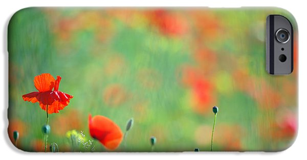 Bokeh iPhone Cases - Poppy Party - Field of Corn Poppies iPhone Case by Roeselien Raimond