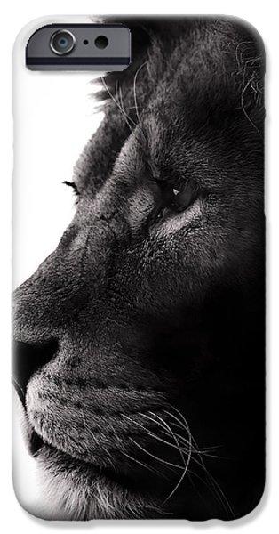Lion Photographs iPhone Cases - Portrait Of a Lion iPhone Case by Martin Newman