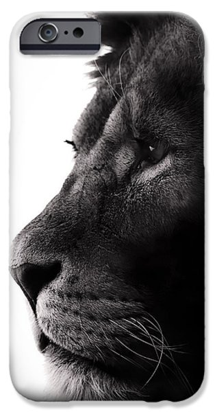 Light And Dark  iPhone Cases - Portrait Of a Lion iPhone Case by Martin Newman