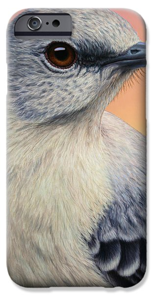 Portrait of a Mockingbird iPhone Case by James W Johnson