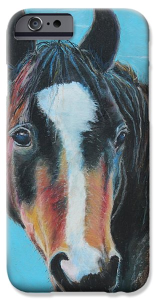 Freedom iPhone Cases - Portrait of a Nokota iPhone Case by Jeanne Fischer