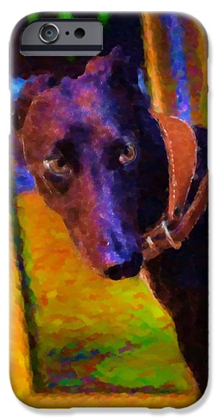 Black Dog iPhone Cases - Portrait of a Portuguese Dog 2 iPhone Case by Mary Machare