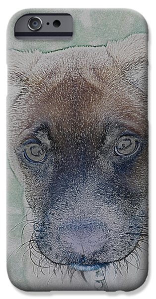 Animal Photograph Mixed Media iPhone Cases - Portrait of a Puppy iPhone Case by Roland Chambers