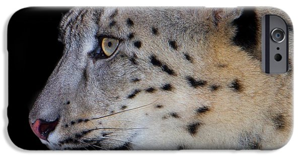 Large Cats iPhone Cases - Portrait Of A Snow Leopard iPhone Case by John Absher
